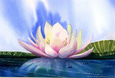Цветы открытки. Открытки цветов тюльпаны