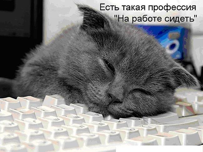 http://kadrovik.by/photo/f548edcbdacaa89f56f475755df0d71d/ddd1e0571a80289cccf4ea33f89ae594.jpg